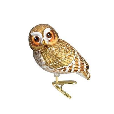 Old World Xmas Pygmy Owl Glass Ornament