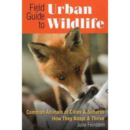 Life Urban Envelope - Field Guide to Urban Wildlife