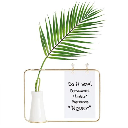 Geometric Metal Wire Vase Rack Hydroponics Plant Holder Desktop Flower Display ()