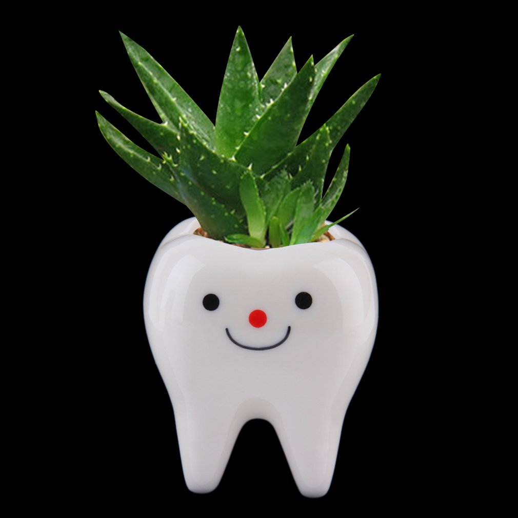 Ceramic Flower Pot DIY Small Planter Succulent Plants Bonsai pot Tooth Design by