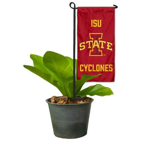 Iowa State University Mini Flower Pot and Garden Bed Mini Flag Marker