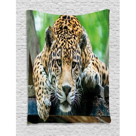 Jungle Basket - Jungle Tapestry, South American Jaguar Wild Animal Carnivore Endangered Feline Safari Image, Wall Hanging for Bedroom Living Room Dorm Decor, 40W X 60L Inches, Orange Black Green, by Ambesonne
