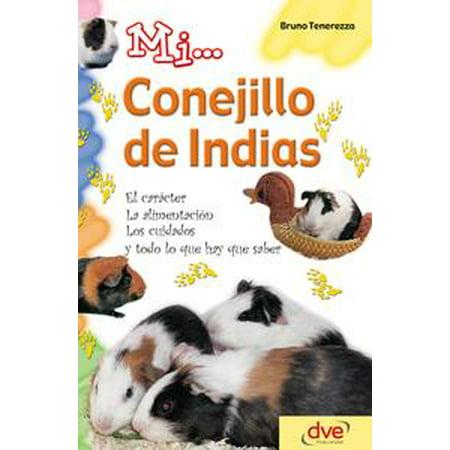 Mi... conejillo de indias: El carácter, la alimentación, los cuidados y todo lo que hay que saber - - Todo Los Disfraces De Halloween