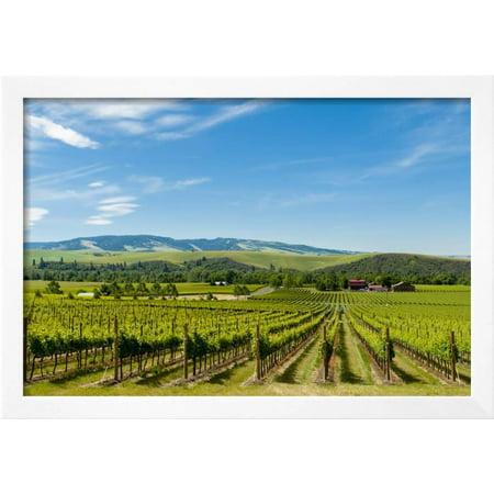 Washington State, Walla Walla. Vineyard in Walla Walla Framed Print ...
