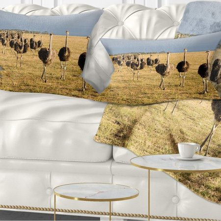 Awe Inspiring Design Art Designart Ostriches Walking In South Africa African Throw Pillow Onthecornerstone Fun Painted Chair Ideas Images Onthecornerstoneorg