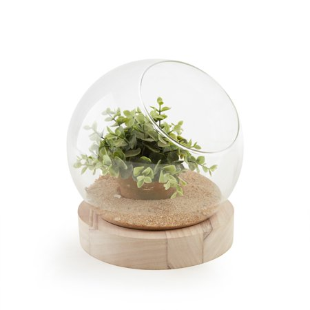 Danya B. Glass Orb Terrarium/Vase on Wooden Stand ()