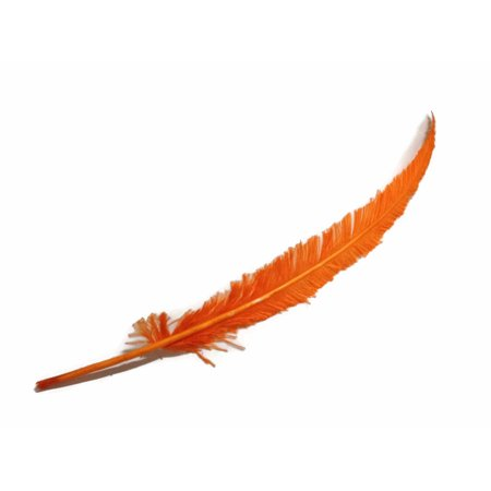 5 Pieces - Orange Long Ostrich Nandu Trimmed Feathers (Ostrich Feather Centerpiece)