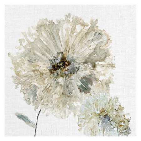 Masterpiece Art Gallery Ivory Spring II Flower by Carol Robinson Canvas Art Print 20
