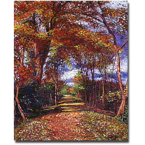 "Trademark Art ""Autumn Colored Road"" Canvas Wall Art by David Lloyd Glover"