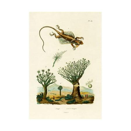Flying Dragon, 1833-39 Print Wall (3 Channel Flying Dragon)