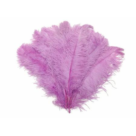 1 2 Lb   18 24  Lavender Large Wing Plumes Wholesale Feathers  Bulk   Swa