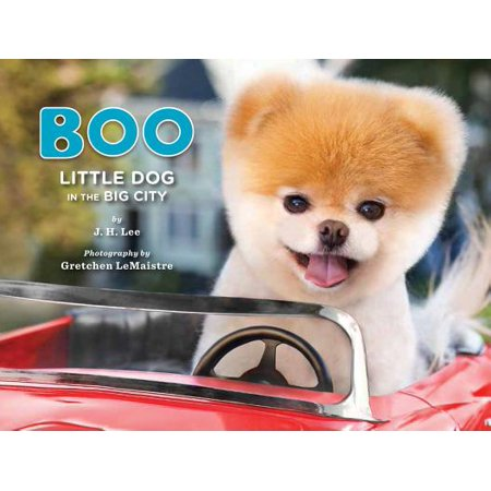 Boo: Little Dog in the Big City](Little City Dogs)