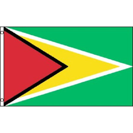 3x5 Guyana Flag Country Banner South American Pennant New Indoor Outdoor (Guyana Country Flag)