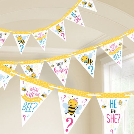 Baby Shower 'What Will it Bee?' Pennant Banner Kit (15ft) - Halloween Pennant Banner Printable