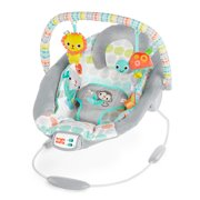 Bright Starts Cradling Bouncer - Whimsical Wild