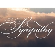 CEO Cards Sympathy Greeting Card Box Set of 25 Cards & 26 Envelopes - S1602