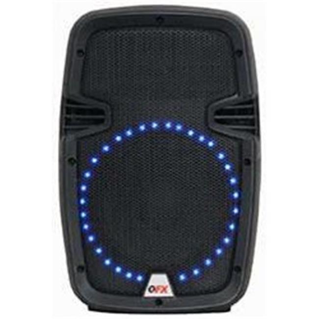 Bluetooth PA Speaker System