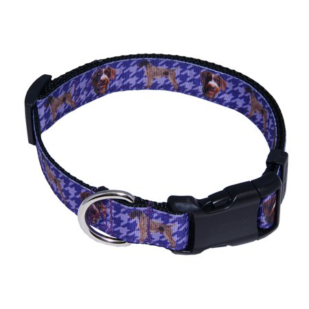 Country Brook Petz™ Deluxe German Wirehaired Pointer Ribbon Dog Collar