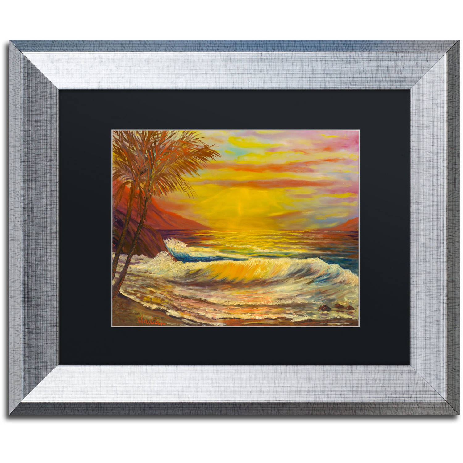 Trademark Fine Art 'A Tropical Lagoon' Canvas Art by Manor Shadian, Black Matte, Silver Frame