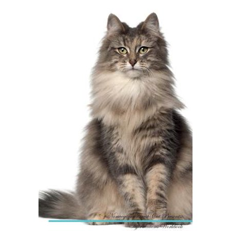Norwegian Forest Cat Affirmations Workbook Norwegian Forest Cat Presents : Positive and Loving Affirmations Workbook. Includes: Mentoring Questions, Guidance, Supporting You.