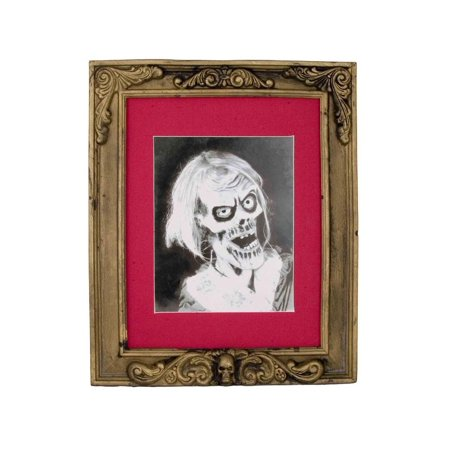 Halloween Frames For Photos (Skeleton Picture Frame Halloween)