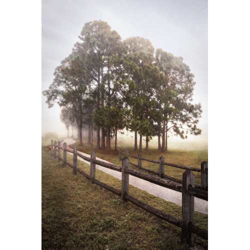 "Portfolio Canvas Decor ""Country Journey II"" by Celebrate Life Gallery Framed and Stretched Ready-to-Hang Canvas Wall Art"