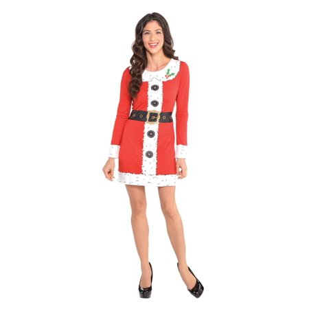 Santa Claus Womens Adult Long Sleeve Christmas Costume Dress (Origin Of Santa Claus)
