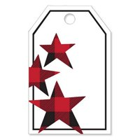 Buffalo Plaid Stars Gloss Printed Gift Tags - 2 1/4in. x 3 1/2in. - 50 Pack