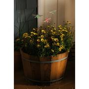 Evergreen Enterprises, Inc Night Garden 4 Piece Dragonfly Solar Color Chasing Garden Stake Set