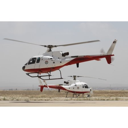 A pair of AS350 Squirrel helicopters of the Royal Jordanian Air Force Canvas Art - Ofer ZidonStocktrek Images (35 x 23) (The Air Jordan 11)