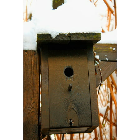 Canvas Print Bird Aviary Cold Shelter Bird Feeder Winter Snow Stretched Canvas 10 x 14