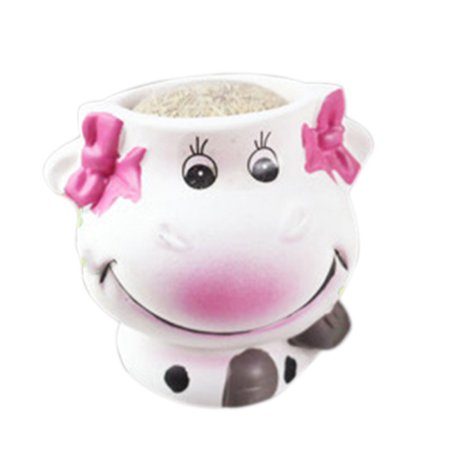 Fysho Ceramic Succulent Planter Flower Pot, DIY Long Grass Head Doll Potted Office Home Green Plant Decoration Couple Cows Fleshy Small Flower Pot (female) - Cow Decorations