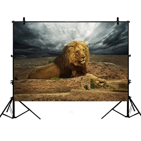 PHFZK 7x5ft Nature Landscape Backdrops, African Lion in the Desert Photography Backdrops Polyester Photo Background Studio Props - Detroit Lions Background
