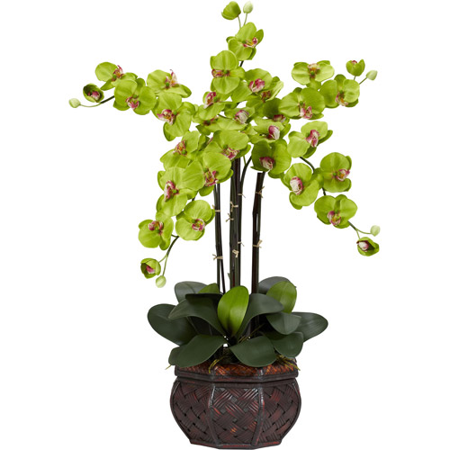 Phalaenopsis with Decorative Vase Silk Flower Arrangement, Green