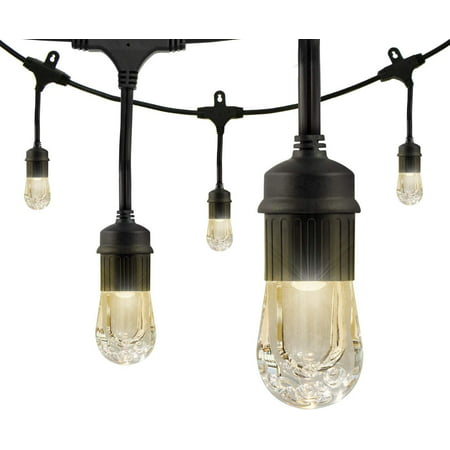 Enbrighten Classic LED Café String Lights, 24ft. 12 Acrylic Bulbs, Indoor/Outdoor, Weatherproof, Shatterproof, Black Cord, 31662