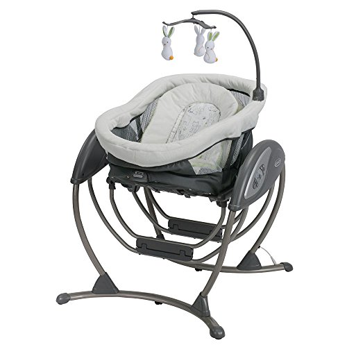 Graco DreamGlider 2-in-1 Gliding Swing and Sleeper Rascal B04CB142 by Graco