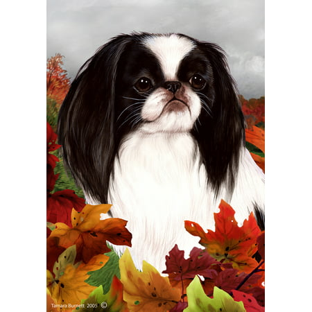 Japanese Chin Black/White - Best of Breed Fall Leaves Garden