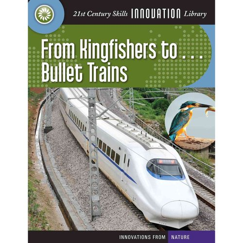 From Kingfishers To... Bullet Trains