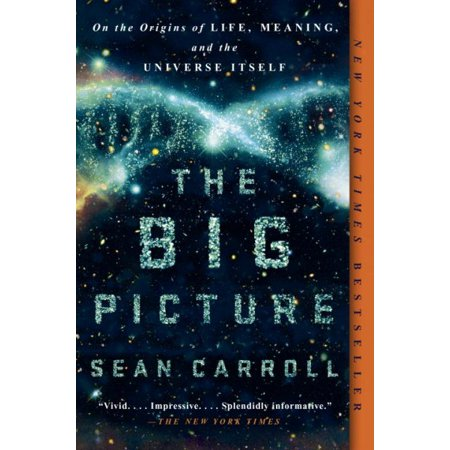 The Big Picture  On The Origins Of Life  Meaning  And The Universe Itself