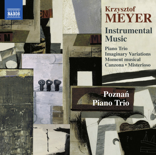 Meyer   Poznan Piano Trio Instrumental Music [CD] by