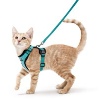 Rabbitgoo Cat Harness and Leash Set for Walking,Escape Proof with 59 Inches Leash - Adjustable Soft Vest Harnesses for Small Medium Cats,Cat Leash Harness with Reflective Strips,Green