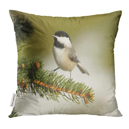 BSDHOME Animal Black Capped Chickadee Poecile Atricapilla on Pine Tree Branch Avian Pillow Case 20x20 Inches Pillowcase - image 1 de 1