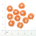 Expo Int'l Mini Daisy Applique Pack of 10