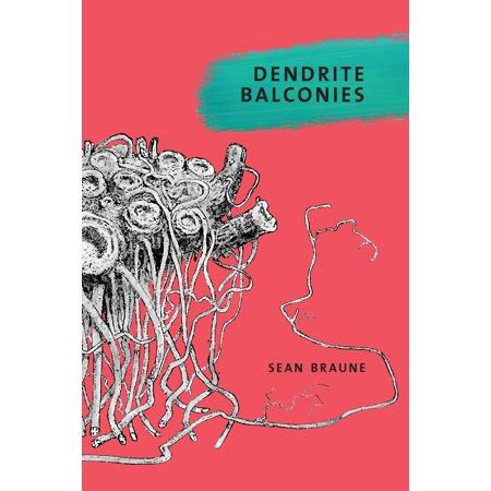 Dendrite Balconies (Function Of Dendrites)