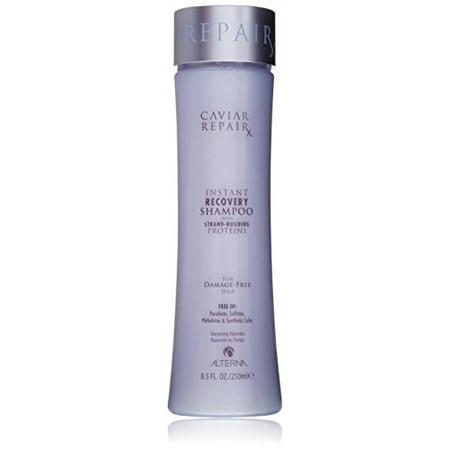 Caviar Timeless Repair (Alterna Caviar Repair Rx Instant Recovery Shampoo, 8.5 Fl Oz )