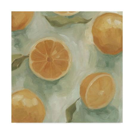 - Trademark Fine Art 'Citrus Study in Oil II' Canvas Art by Emma Scarvey