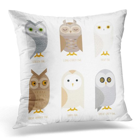 BOSDECO White Flat Cute Owl Characters Showing Different Species Barn Pillowcase Pillow Cover Cushion Case 18x18 inch - image 1 of 1