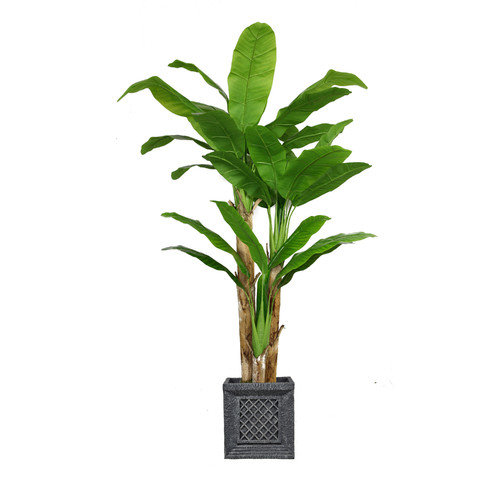 "78"" Tall Banana Tree Artificial Faux Lifelike with Real Touch Leaves in Planter By Minx NY"