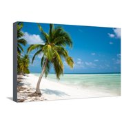 Island Paradise - Palm Trees Hanging over a Sandy White Beach with Stunning Turquoise Waters and Wh Stretched Canvas Print Wall Art By Aleksandar Todorovic