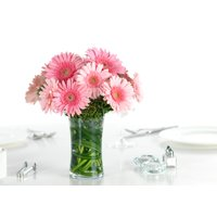 Better Homes&gardens No Shade 3qt Bhg Gerbera Daisy